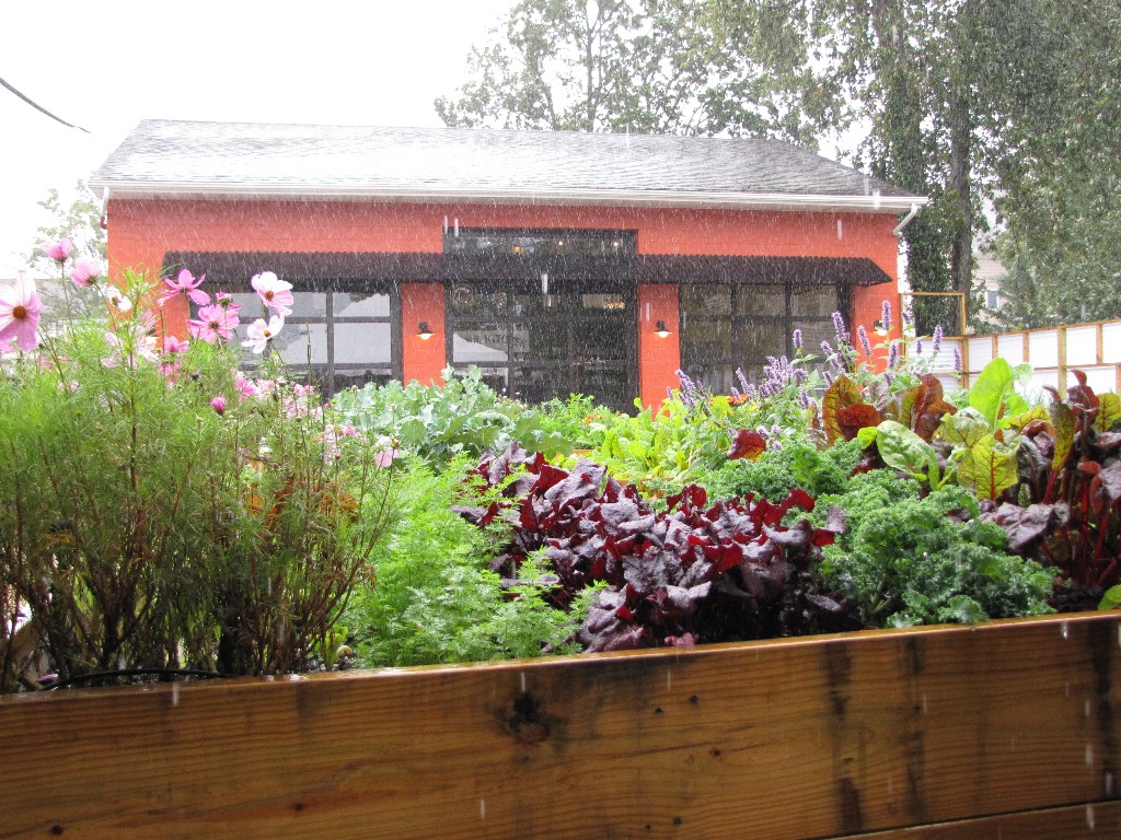 Kitchen Garden Foundation Soul Kitchen Archives Red Bank Green