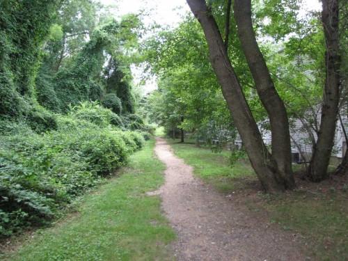 locust trail 073112