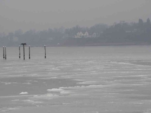 fh navesink ice 011014