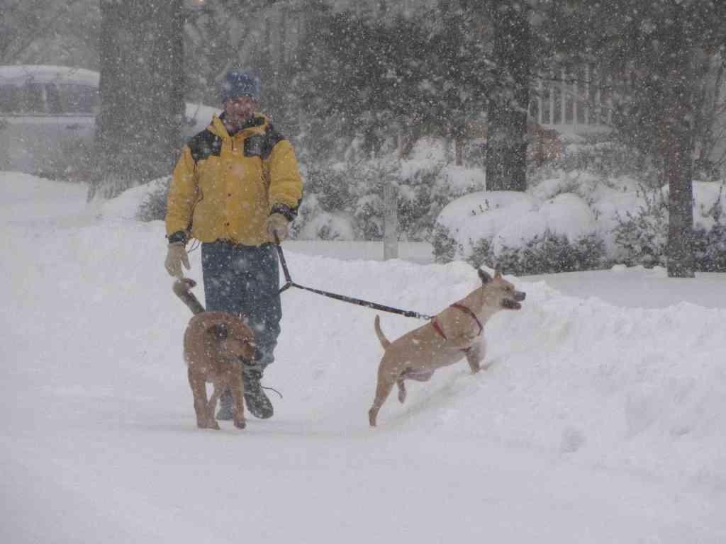rb snowstorm 010314 4