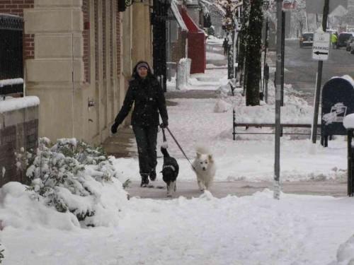 rb snow 020314 9