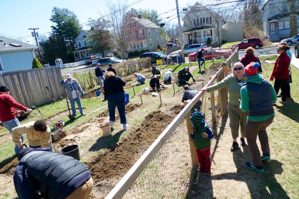 community garden 2014 1
