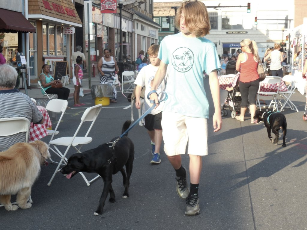 061714 dogs11