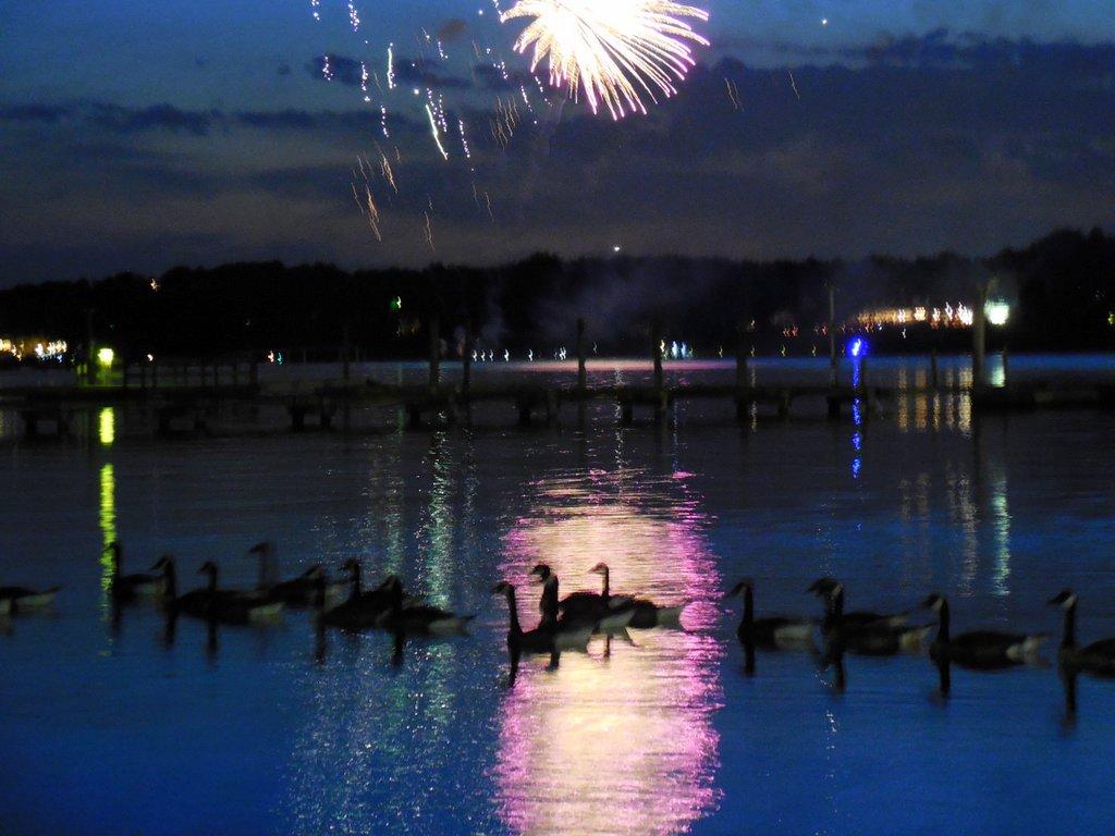 062714 fireworks10