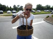 072614 Parker berries