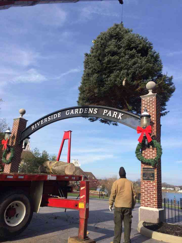 Christmas Tree Lighting In Red Bank Nj : Red bank tree s up green