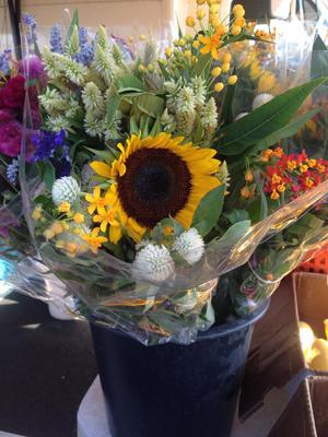 SBFM_flowers