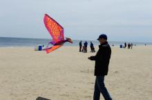 kite-72877