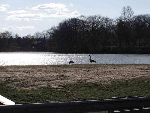 shadow lake 041115