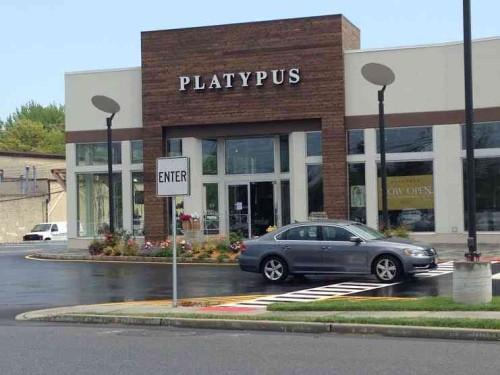 platypus 051115