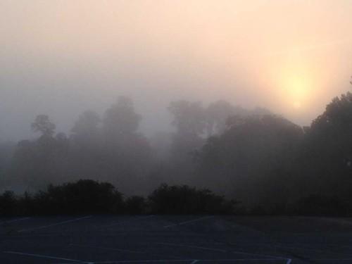 rb fog 082415