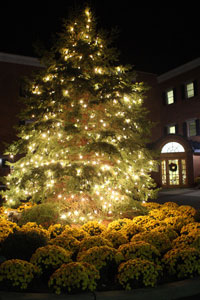Tree-Lighting_special-events(200)