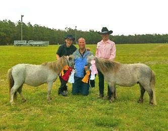 Erica Todd miniature horses