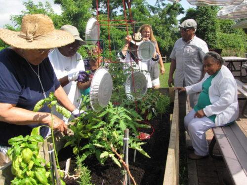 rb seniors garden 071416 2