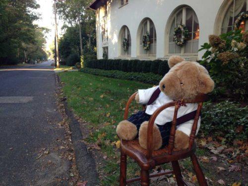 chair-bear-101916