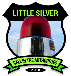 LITTLE SILVER: Police blotter includes several home burglary