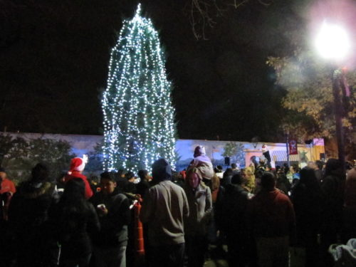 red bank tree lighting