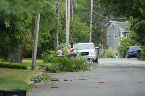 fair haven nj trees down